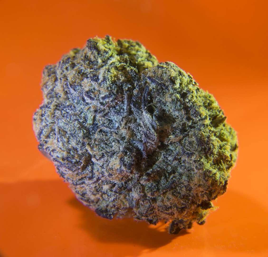 popular cannabis strains in san francisco